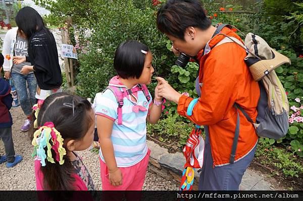 120717溫帶花卉區 你要吃吃看球根秋海棠嗎