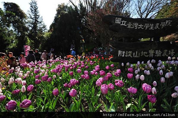 2013春之饗宴3-16 015