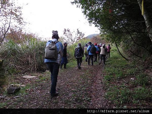 20141216-組務會議 三角峰步道(李圓恩) 開始走三角峰步道 (1)