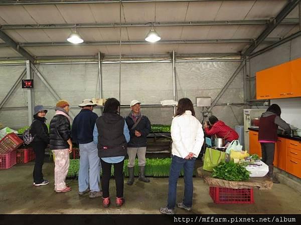 20150413園藝疏壓(李圓恩) 阿雄與學員在花卉包裝場 介紹菜苗 (5)