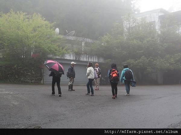 20150413園藝疏壓(李圓恩) 阿雄帶隊走上一平臺 (4)