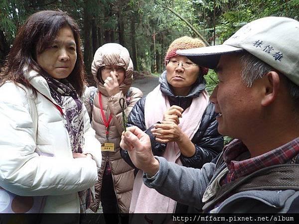 20150412-春季園藝紓壓體驗工作坊(何采庭)(肖) (9)
