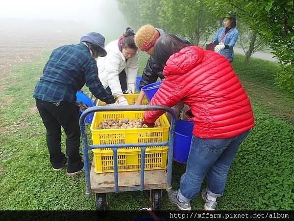 20150413-春季園藝紓壓體驗工作坊(何采庭)(肖) (104)