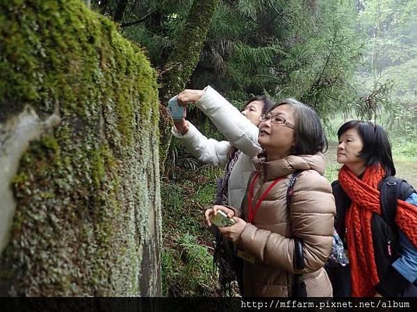 20150412-春季園藝紓壓體驗工作坊(何采庭)(肖) (49)