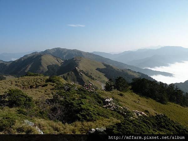 090429自東峰遠眺合歡北峰與玉山杜鵑
