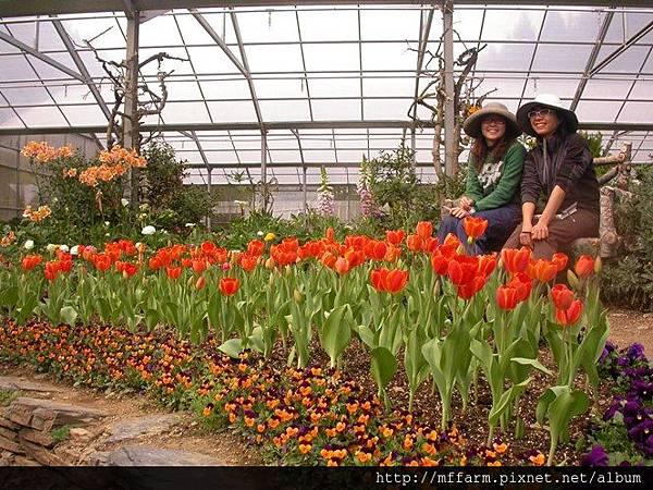 090303溫帶花卉區 韻如與俐璇