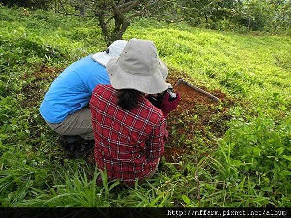 090506蘿蔔坑 在拍蜥蜴的阿雅和俐璇