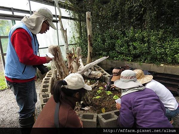 20150128-春陽 解說員訓練(李圓恩) 可愛植物區 詠婷介紹食蟲植物與解說員們 (2)