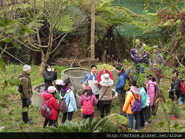 20150209春陽 詠婷與土城國中 水生植物拳 (5)