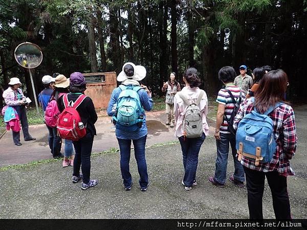 20151023~24教師體驗學習營 森林探索 (25)