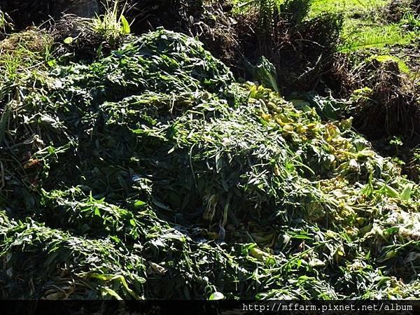 農業廢棄物