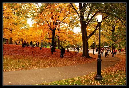Autumn___Central_Park