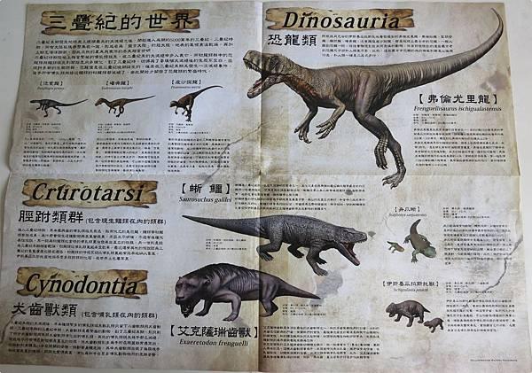 恐龍展海報內頁