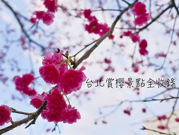 batch_IMG_8836.JPG