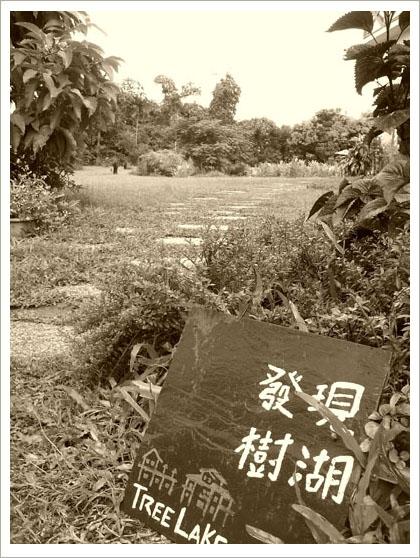 RIMG6842().jpg