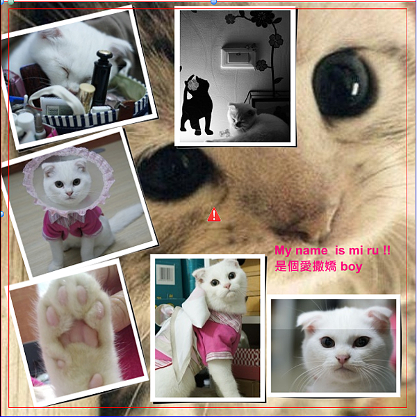 2012Photolife家庭相簿 (39)