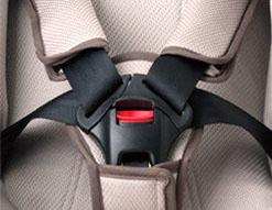 五點式安全帶