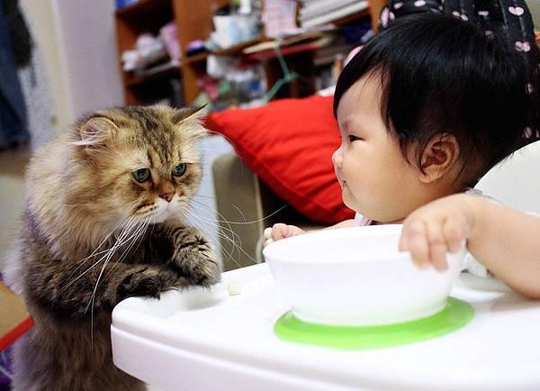 讓我看看你在吃甚麼