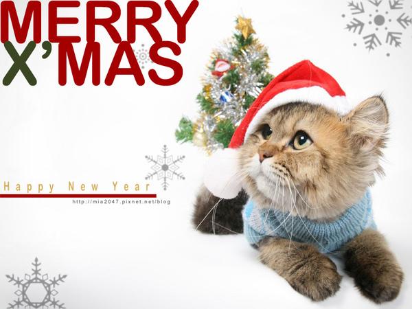 耶誕卡!!!