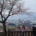清水寺上遠眺京都市區