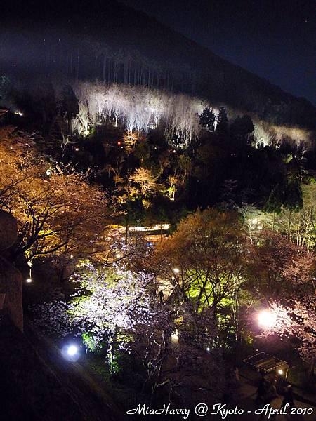 清水寺內的山林