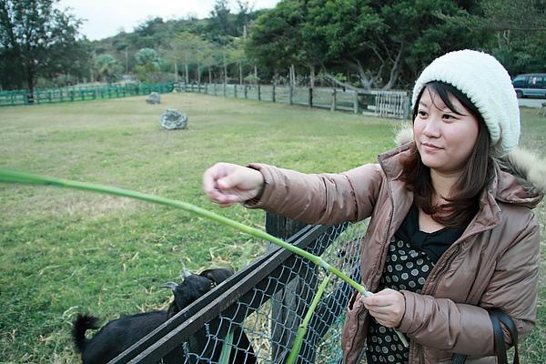 20101219_墾丁石牛溪0003.JPG