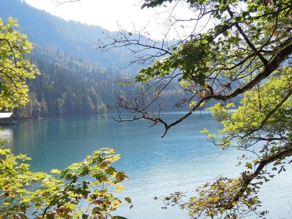 天鵝湖2.JPG