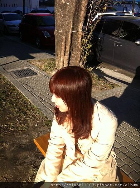 S__16195611.jpg
