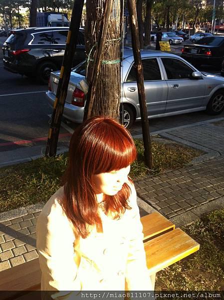 S__16195613.jpg