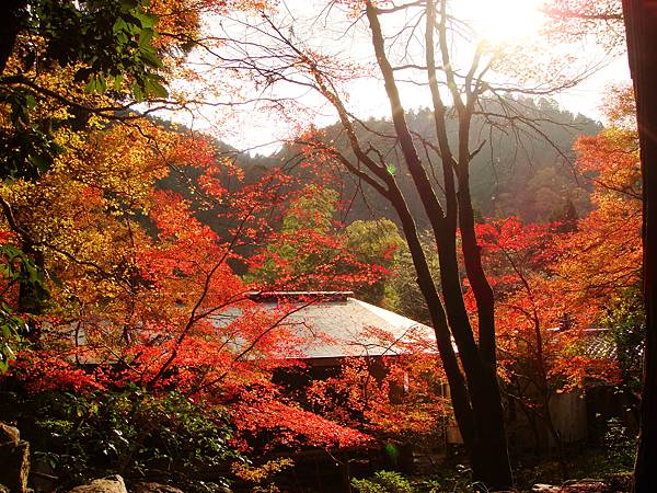 高雄高山寺附近