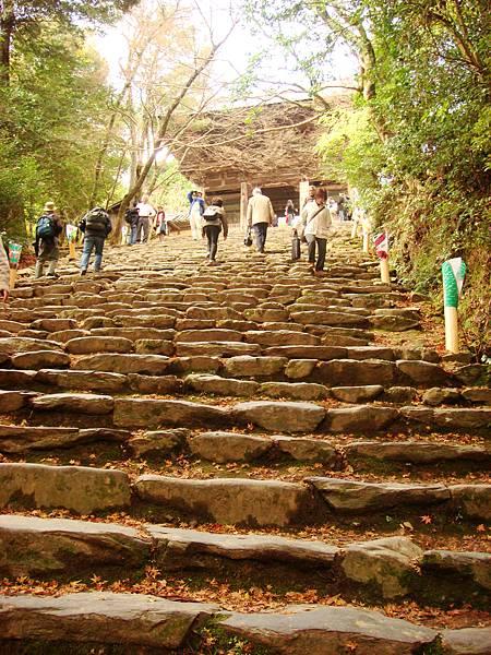 高雄神護寺前的階梯