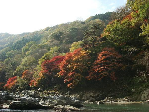 嵐山保津川沿岸7