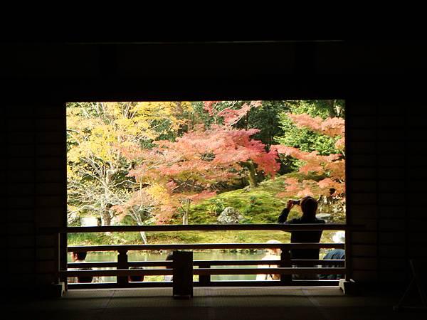嵐山天龍寺庭院1