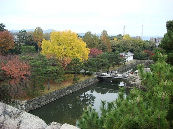 從二条城天守閣舊跡俯瞰庭園