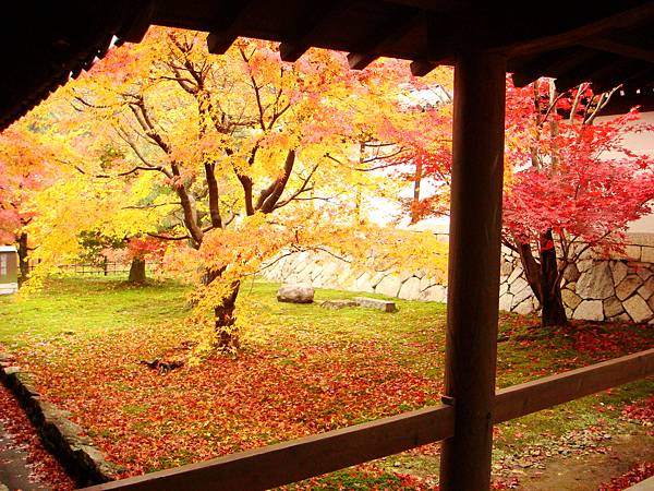東福寺境內2