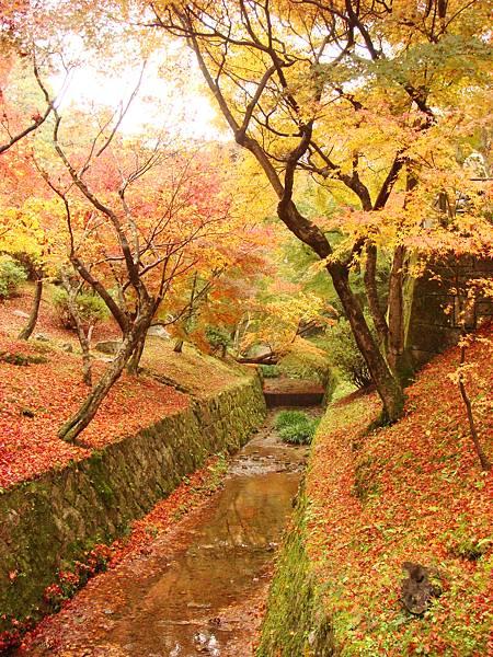 東福寺境內4