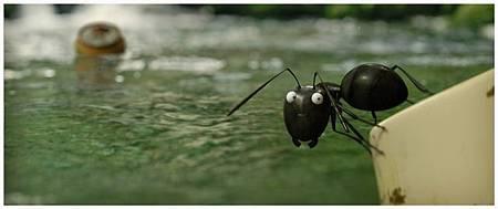昆蟲LIFE秀電影版劇照3