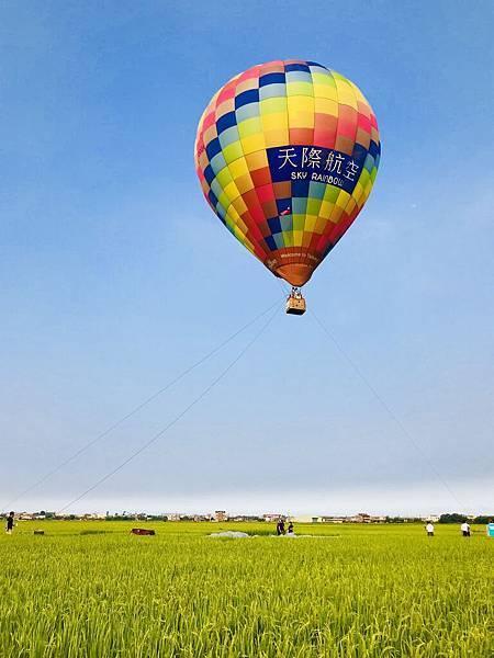 宜蘭伯朗大道熱氣球 三奇稻浪 29.jpg