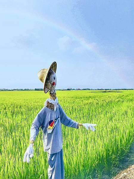 宜蘭伯朗大道熱氣球 三奇稻浪 33.jpg