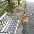 公園+影片 004.jpg