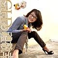 20100119_TD5212_model_13.JPG