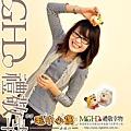 20100119_TD5212_model_41.JPG