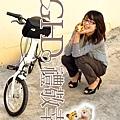 20100119_TD5212_model_54.JPG