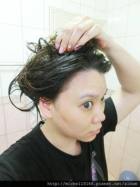 BioFIVE馬鞭草洗髮精