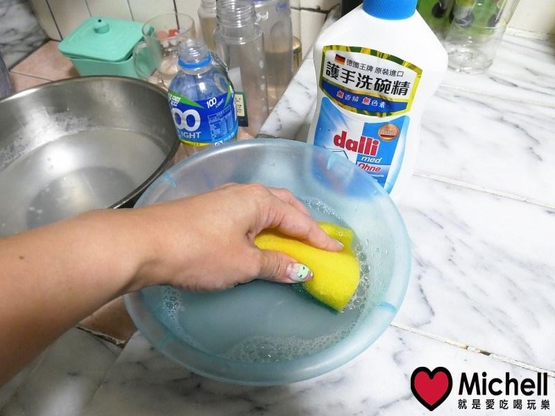 德國達麗Dalli護手洗碗精