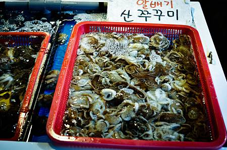 KoreaTrip2012-food-6