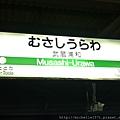 IMG_6217.jpg
