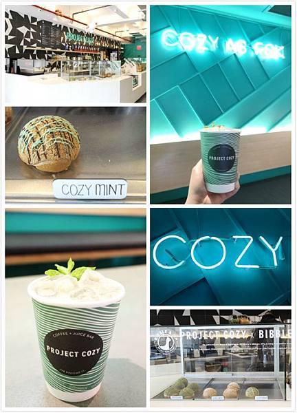 Project Cozy.jpg