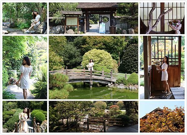 San Mateo Japanese Garden.jpg