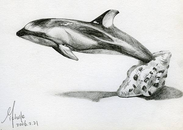 dolphin jumping out of a seashell